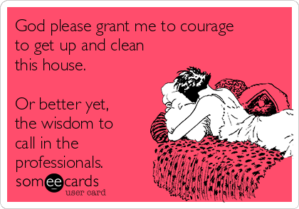 God please grant me to courage to get up and clean this house.  Or better yet, the wisdom to call in the  professionals.