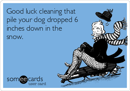 Good luck cleaning that pile your dog dropped 6 inches down in the snow.
