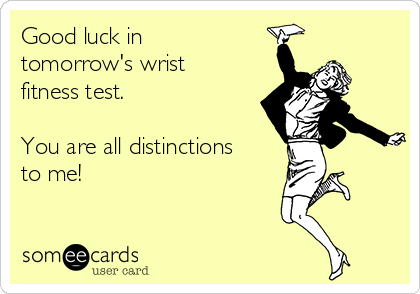 Good luck in tomorrow's wrist fitness test.  You are all distinctions to me!