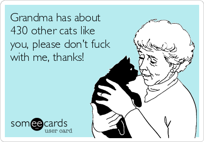 Grandma has about 430 other cats like you, please don't fuck with me, thanks!