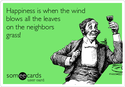 Happiness is when the wind blows all the leaves on the neighbors grass!