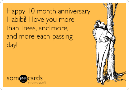 Happy 10 month anniversary Habibi! I love you more than trees, and more, and more each passing day!