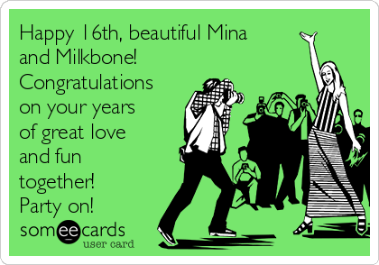 Happy 16th, beautiful Mina and Milkbone! Congratulations on your years of great love and fun together! Party on!