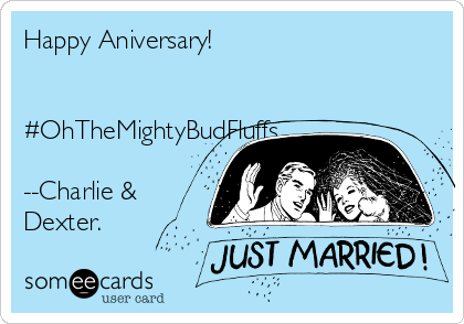 Happy Aniversary!   #OhTheMightyBudFluffs  --Charlie &   Dexter.