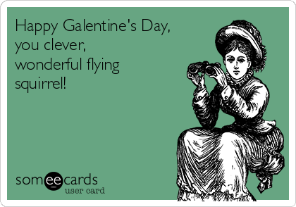 Happy Galentine's Day, you clever, wonderful flying squirrel!