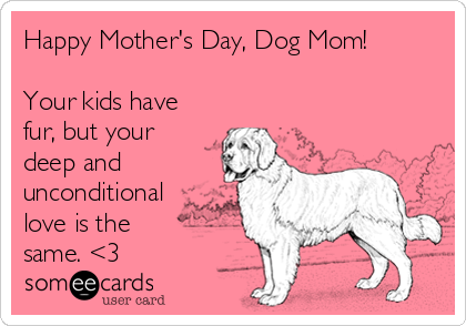 Happy Mother's Day, Dog Mom!  Your kids have fur, but your deep and unconditional love is the same. <3