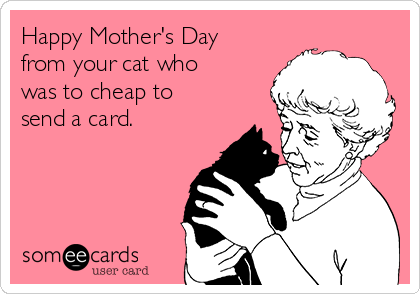 Happy Mother's Day from your cat who was to cheap to send a card.