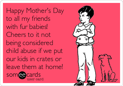 Happy Mother's Day to all my friends with fur babies!  Cheers to it not being considered child abuse if we put our kids in crates or leave them at home!