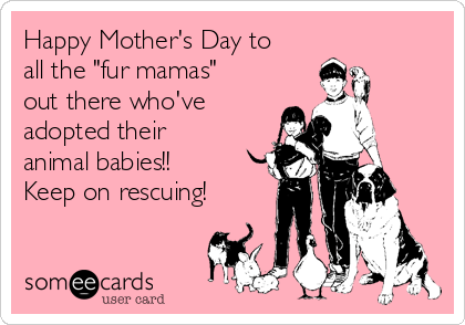 "Happy Mother's Day to all the ""fur mamas"" out there who've adopted their animal babies!! Keep on rescuing!"