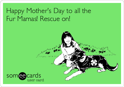 Happy Mother's Day to all the  Fur Mamas! Rescue on!