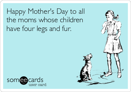 Happy Mother's Day to all the moms whose children have four legs and fur.