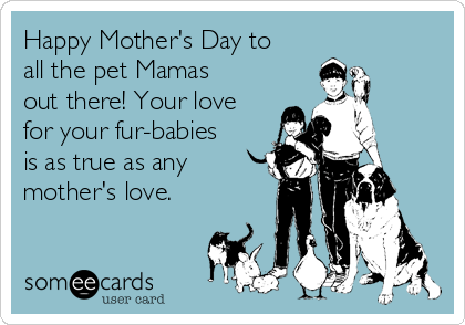 Happy Mother's Day to all the pet Mamas out there! Your love for your fur-babies is as true as any mother's love.