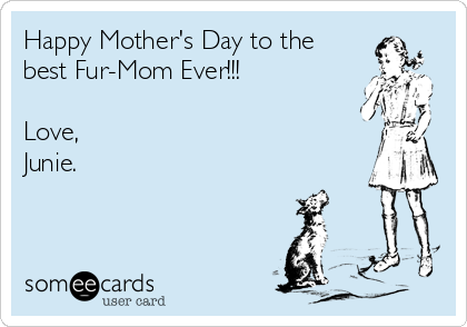 Happy Mother's Day to the best Fur-Mom Ever!!!  Love, Junie.