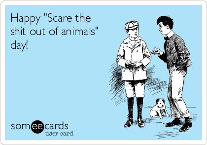 "Happy ""Scare the shit out of animals"" day!"