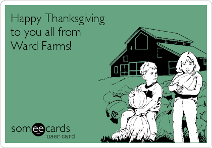 Happy Thanksgiving to you all from Ward Farms!