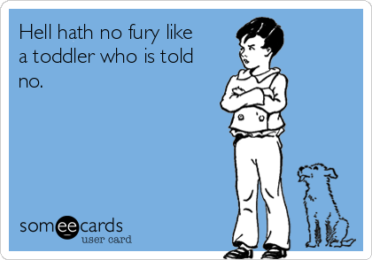 Hell hath no fury like a toddler who is told no.