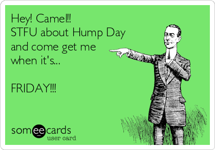 Hey! Camel!! STFU about Hump Day and come get me when it's...  FRIDAY!!!