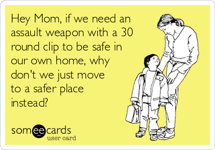 Hey Mom, if we need an assault weapon with a 30 round clip to be safe in our own home, why don't we just move to a safer place instead?