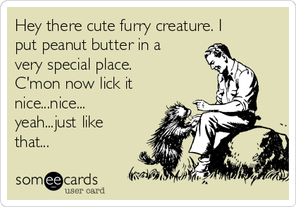 Hey there cute furry creature. I put peanut butter in a very special place. C'mon now lick it nice...nice... yeah...just like that...