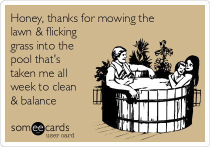Honey, thanks for mowing the lawn & flicking grass into the pool that's taken me all week to clean & balance