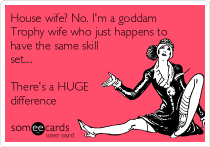 House wife? No. I'm a goddam  Trophy wife who just happens to have the same skill set....   There's a HUGE difference