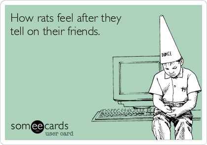 How rats feel after they tell on their friends.