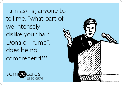 """I am asking anyone to tell me, """"what part of, we intensely dislike your hair, Donald Trump"""", does he not comprehend???"""