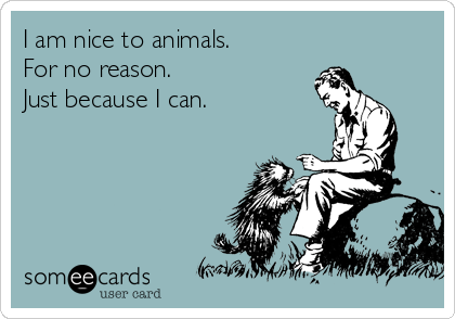I am nice to animals. For no reason.  Just because I can.