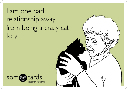 I am one bad relationship away from being a crazy cat lady.