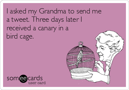 I asked my Grandma to send me a tweet. Three days later I received a canary in a bird cage.