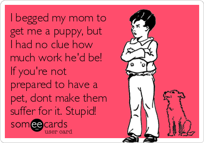 I begged my mom to get me a puppy, but I had no clue how much work he'd be!  If you're not prepared to have a pet, dont make them suffer for it. Stupid!