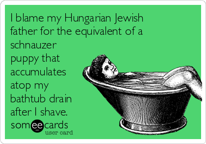 I blame my Hungarian Jewish father for the equivalent of a schnauzer puppy that accumulates atop my bathtub drain after I shave.