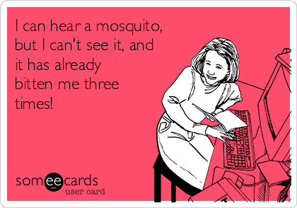 I can hear a mosquito, but I can't see it, and it has already bitten me three times!