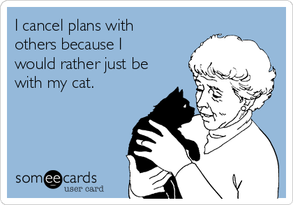 I cancel plans with others because I would rather just be with my cat.