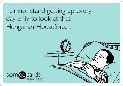 I cannot stand getting up every day only to look at that Hungarian Housefrau.....