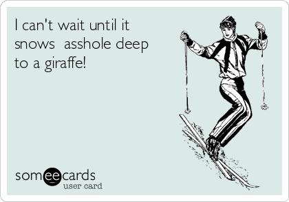 I can't wait until it snows  asshole deep to a giraffe!