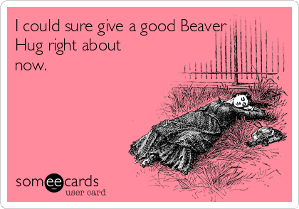 I could sure give a good Beaver Hug right about now.