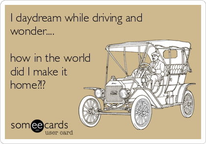 I daydream while driving and wonder....  how in the world did I make it home?!?