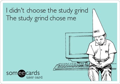 I didn't choose the study grind The study grind chose me