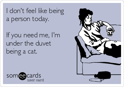 I don't feel like being a person today.  If you need me, I'm under the duvet being a cat.