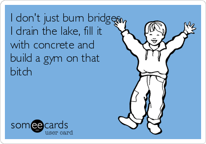 I don't just burn bridges. I drain the lake, fill it with concrete and build a gym on that bitch