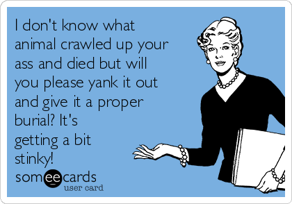 I don't know what animal crawled up your ass and died but will you please yank it out and give it a proper burial? It's getting a bit stinky!