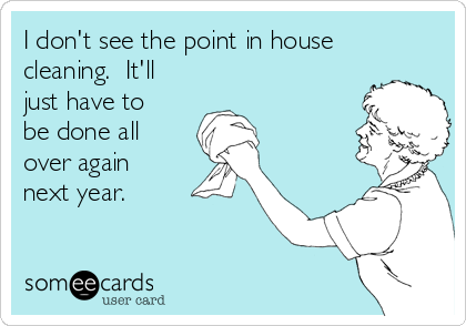 I don't see the point in house cleaning.  It'll just have to be done all over again next year.