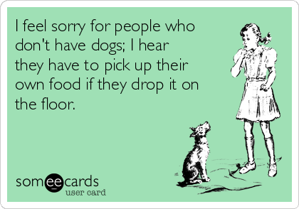 I Feel Sorry For People Who Don T Have Dogs I Hear They