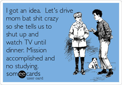 I got an idea.  Let's drive mom bat shit crazy so she tells us to shut up and watch TV until dinner. Mission accomplished and no studying.
