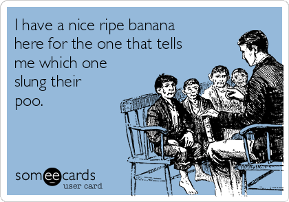 I have a nice ripe banana here for the one that tells me which one slung their poo.