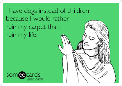 I have dogs instead of children because I would rather ruin my carpet than ruin my life.