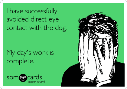 I have successfully avoided direct eye contact with the dog.   My day's work is complete.