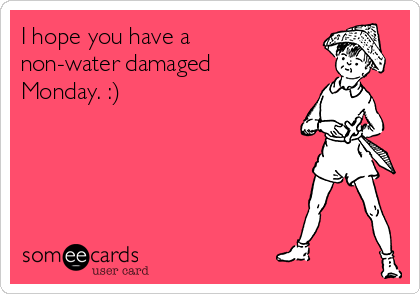 I hope you have a non-water damaged Monday. :)