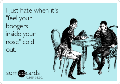 "I just hate when it's  ""feel your boogers inside your nose"" cold out."